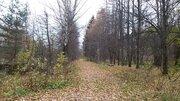 Участок 15 Га в 31 км по Ленинградскому шоссе для строительства - Фото 3