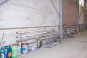 Сдам базу, Аренда торговых помещений в Тюмени, ID объекта - 800360253 - Фото 5
