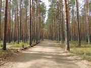 Продам участки на берегу Волги Ново-Окатово г. Калязин - Фото 3