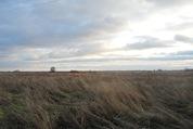 1 200 000 Руб., Участок с видом на озеро, Земельные участки в Гдовском районе, ID объекта - 201340000 - Фото 3
