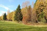 Прилесной участок в элитном поселке на Рублевке со всеми коммуникациям - Фото 3