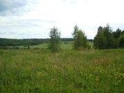 13 гектар кфх в Василево, Переславский район - Фото 1