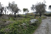 Земельный участок в Италии 2,61 га - Фото 1