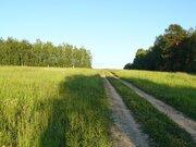 Деревня Митино участок 12,4 гектара Заокский район Тульская область - Фото 2