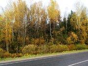 Новинка рынка недвижимости, собственный лес, 13 Га. - Фото 3
