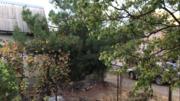 Продажа земельного участка в Симферополе с недостроем. - Фото 4