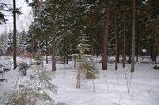 Лесные участки в кп Самар-1 - Фото 2