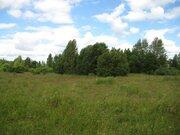 2 гектара со старым домом в д. Богданово Пушкиногорского района - Фото 5