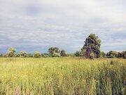Участок 65 соток в д. Путилово - Фото 2