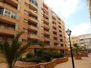 Продажа квартиры, Торревьеха, Аликанте, Купить квартиру Торревьеха, Испания по недорогой цене, ID объекта - 313151788 - Фото 1