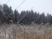 Симферопольское ш. 65 км от МКАД, Голыгино, Участок 15 сот. - Фото 2