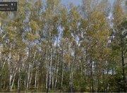 Продается земельный участок, Чехов г, Богдановка д, 25 сот - Фото 1