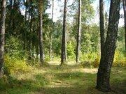 Купить земельный участок ул. Старо-Московская, д.63
