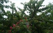Объект 547258, Дачи в Таганроге, ID объекта - 503063758 - Фото 7