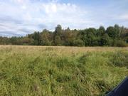 Земельный участок лпх, Батецкий район, деревня Мокрицы - Фото 3