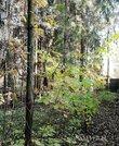 Продается участок. , Федоровка, коттеджный поселок Лермонтово - Фото 4