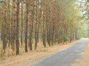 Предлагаю к продажи шикарный участок под коттеджный городок, Земельные участки в Украине, ID объекта - 201049347 - Фото 5