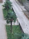 45 000 $, Продаю 2-комнатную квартиру, 44.51 кв.м, Купить квартиру Тбилиси, Грузия по недорогой цене, ID объекта - 326538417 - Фото 22