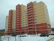 1кк Щелковский район, д. Гребнево - Фото 3