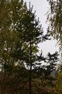 Продажа загородного дома со всеми коммуникациями, 5 км. от трассы м2 - Фото 4