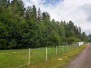 Продаю участок 30 соток в лесу, Дмитровское шоссе - Фото 2
