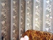 Продам 4к на пр. Молодежном, 7, Купить квартиру в Кемерово по недорогой цене, ID объекта - 321022156 - Фото 33