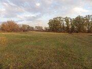 Продам земельный участок в селе Большой Хомутец - Фото 4