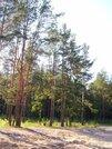 Земельный участок 2.5 га, 15 км от Всеволожска - Фото 2
