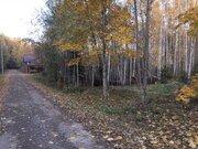 Продаю участок, 20 соток, Киевское ш, новая Москва, в лесу, 3,8 млн.р - Фото 1