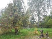 Отличная новая дача в Белоострове. - Фото 5