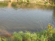 55 соток в деревне с прудом - Фото 2