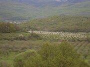 Продается участок 2,1 га в с. Богатырь, Бахчисарайский р-н, Крым - Фото 2