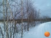 Продается участок, Дмитровское шоссе, 45 км от МКАД - Фото 4