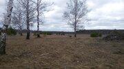 Продам земельные участки в д. Коржавино Муромского района - Фото 2