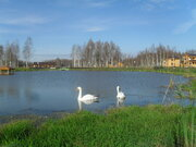 Продажа дома с земельным участком в кп Лесные озера (Владимирская обл - Фото 3