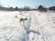 Земельный участок в д. Шемякино, 90 км Киевского ш. - Фото 5