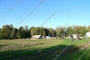 Калужское ш. 68 км от МКАД, Чернишня, Участок 120 сот. - Фото 4