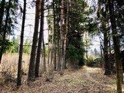 Лесной участок 27 сот. , Новорижское ш, 28 км. от МКАД.