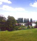 Земельный участок 25 соток, тзр, п.Латошинка, свой выход на пруд - Фото 1