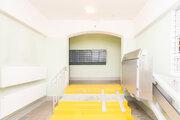 Продам трехкомнатную квартиру в Некрасавке - Фото 3
