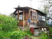 Продам дачу в городе, район Бабарынка, Продажа домов и коттеджей в Тюмени, ID объекта - 503939546 - Фото 5