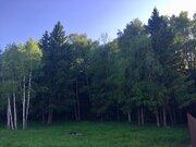 Шикарный лесной участок с соснами! 15,5 сот! Дешево!