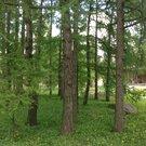Прекрасный деревянный дом площадью 778 кв.м под ключ, построенный в . - Фото 4