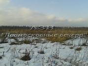 Горьковское ш. 120 км от МКАД, Новинки, Участок 1000 сот. - Фото 5