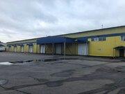 Аренда склада 2736 м2,/мес., Аренда склада в Мытищах, ID объекта - 900558044 - Фото 3