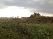 Участок 54 сотки в д. Соколово, с коммуникациями - Фото 5
