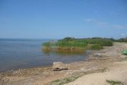 Участок на Чудском озере