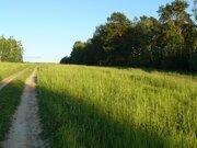 Деревня Митино участок 12,4 гектара Заокский район Тульская область - Фото 3
