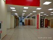 Сдается помещение 470,5 м2 на 1этаже в тк Русская деревня - Фото 5