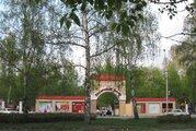 Продажа ПСН в Алтайском крае
